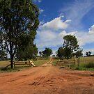 An Aussie Rural Driveway by AlexKokas