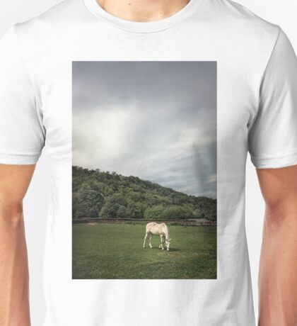 Pleasant Valley Sunday Unisex T-Shirt