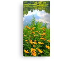 Daisies Near the Lake Canvas Print