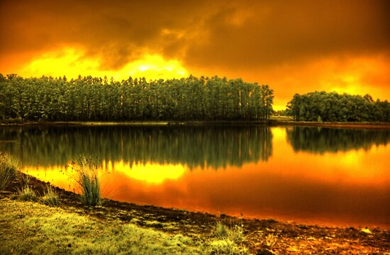 'Blaze on Trout lake', Pemberton, WA by BigAndRed