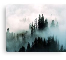 Barely Visible  Canvas Print