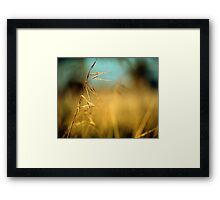 Perfectly lonely Framed Print
