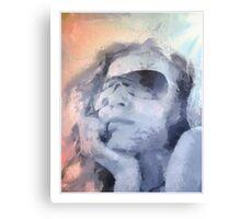 cool shades Canvas Print