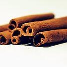 Cinnamon by Sangeeta