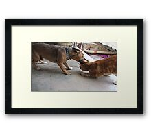 Bath time!!!! Framed Print