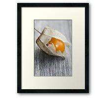 """""""Leaving Home"""" Framed Print"""
