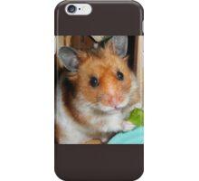 Barney iPhone Case/Skin