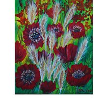 flowers of passion Photographic Print