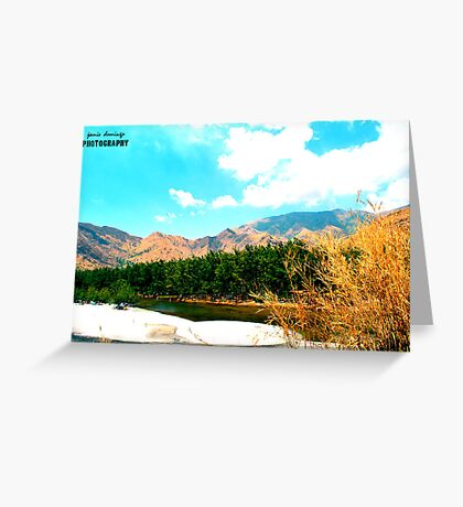 The Busy Pine Trees and The Mountain Hiss Greeting Card