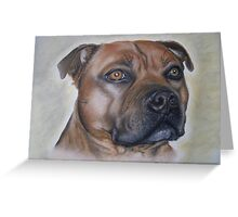 Staffordshire Bull Terrier in Pastel Greeting Card