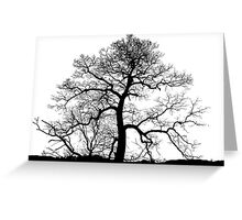 Bare Naked Tree Greeting Card