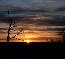 A Sunrise in the Country... by Larry Llewellyn