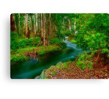 Maroondah Reservoir Spillway Canvas Print