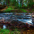 Little River #1 by Jason Green