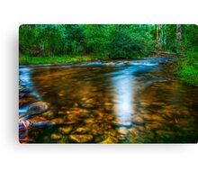 Little River #2 Canvas Print