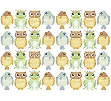 Owls Fish Frogs  Photographic Print