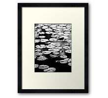 Natures Community Framed Print