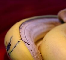 Rotting fruit banana peel by Sophie Matthews