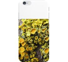 Lichen 1 iPhone Case/Skin