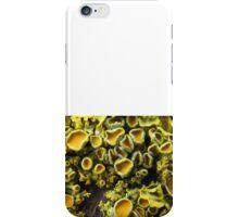 Lichen 3 iPhone Case/Skin