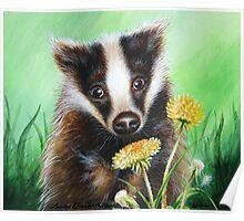 Badger in the Dandelions Poster