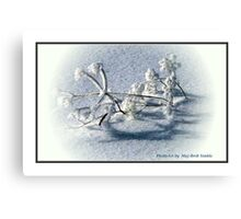 """Frost"" Canvas Print"