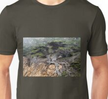 Old Veteran Cypress Unisex T-Shirt