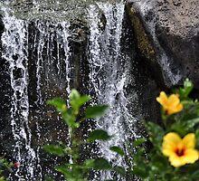 Waterfalls by neversaydie352