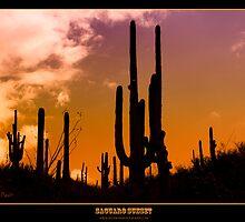 Saguaro Sunset - Titled Print by Mark Podger