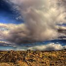Stormy skies in northern Arizona by Mike Olbinski
