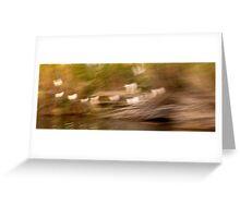 Egrets 1 Greeting Card