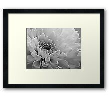 ~ No Colour Time ~ Framed Print