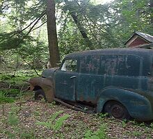 Old Panel Truck  by Margie Avellino