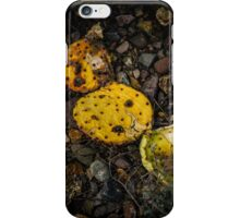 Dried Cactus iPhone Case/Skin