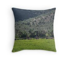 Mule Deer Silhouettes in Sunshine Throw Pillow