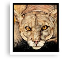 Spirit of the Everglades Canvas Print