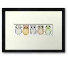 Owls Dog Cat Frog Framed Print