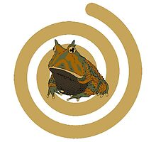 Cool green brown hypnotic frog by funnyshirts