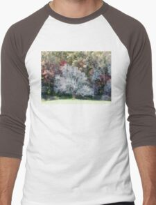 Lone Tree In A Clearing Men's Baseball ¾ T-Shirt