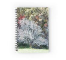 Lone Tree In A Clearing Spiral Notebook