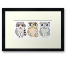 Raccoon, Cat, Dog Blue Framed Print