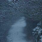 Snowy Pathway  by Dannyshack