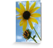 Blooming, Wilting Greeting Card