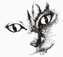 Kitty by born2draw