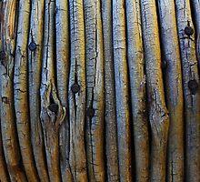 Wooden textured background by Atanas Bozhikov NASKO