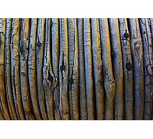 Wooden textured background Photographic Print