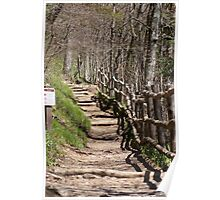 The Appalachian  National Scenic Trail Poster