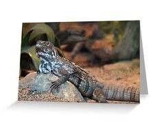 A Scaled Reptile Greeting Card