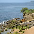 Camel Rock, Santander, Spain by jtalia