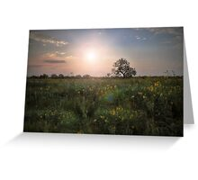 Sunset Kiss.. Greeting Card